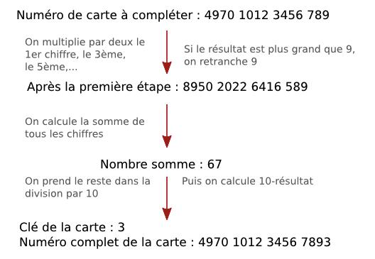 curriculum vitae apr u00e8s la terminale  u2013 coinsupport site